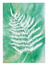 Spring Green Fern by Kari Joy