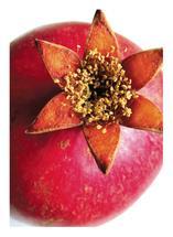 Pomegranate Beauty No.2 by AmmandaCo