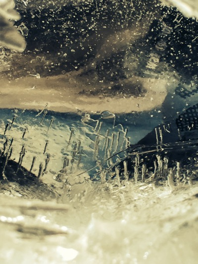 art prints - Icescape by Jessica Bohl