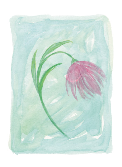 art prints - grace flower by Lauren Young