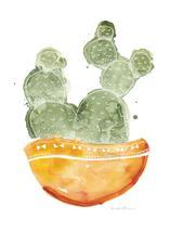 Cactus Impression by Sarah Ehlinger