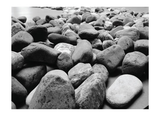art prints - Stepping Stones by Buu Truong