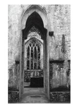 Muckross Abbey by Madison Stuntz