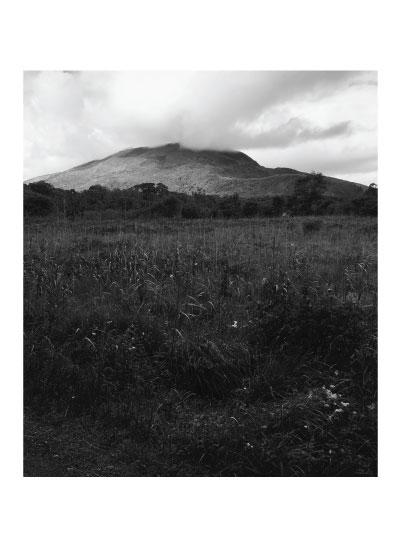 art prints - Killarney National Park by Madison Stuntz