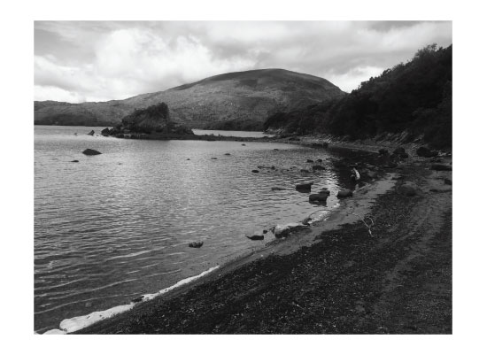 art prints - Muckross Lake by Madison Stuntz