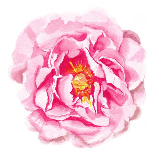 art prints - Floral Fix by Michelle Mospens