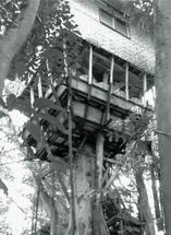 Tree House by Leebert