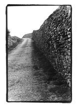 Italian Stone Road by Luiza Budea