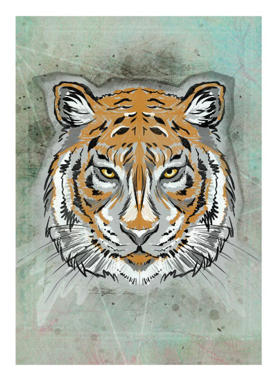 art prints - Tiger by Rachel Kennison