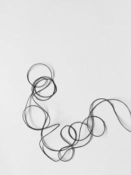 Loopty Loop