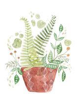 Jungle fern by Sarah Ehlinger