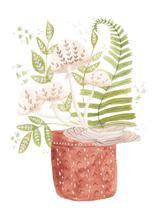 Ferns and Mushrooms wat... by Sarah Ehlinger