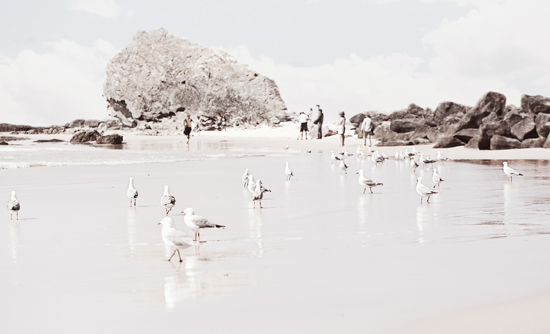 art prints - Gathering on the coast by Mareike von Engelbrechten