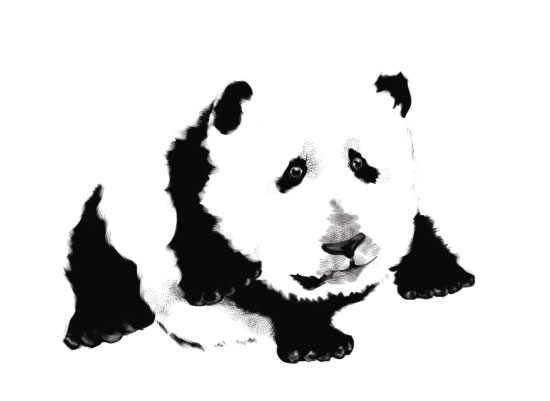 art prints - Panda Baby by John Wynn