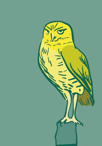 art prints - Confidence Owl by Marina Markova