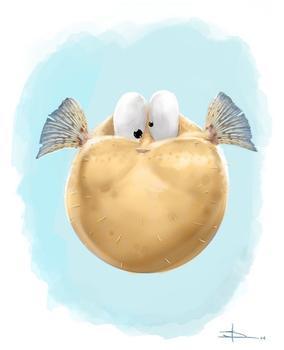 little blowfish