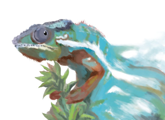 art prints - Faded Chameleon by John Wynn