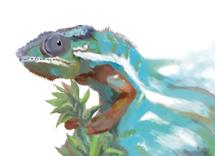 Faded Chameleon by John Wynn