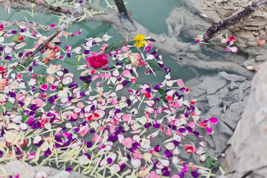 art prints - petals in the quarry #1 by Kelly Christine