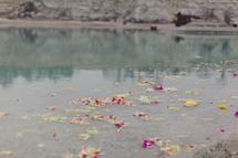 petals in the quarry #2 by Kelly Christine