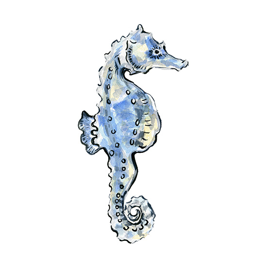 art prints - Seahorse Watercolor by HippieHoppy