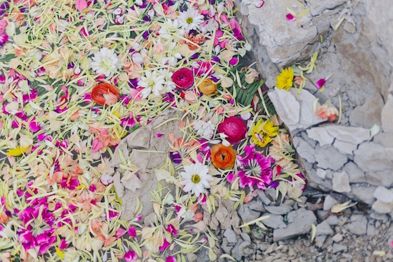 art prints - petals in the quarry #3 by Kelly Christine