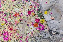 petals in the quarry #3 by Kelly Christine