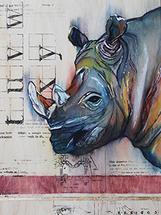 Solemn Rhino by Robyn Briggs