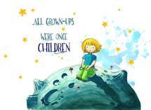 Little Prince by Meda Halmaciu