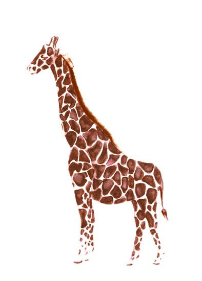 art prints - Sassy Giraffe by Carrie Pray