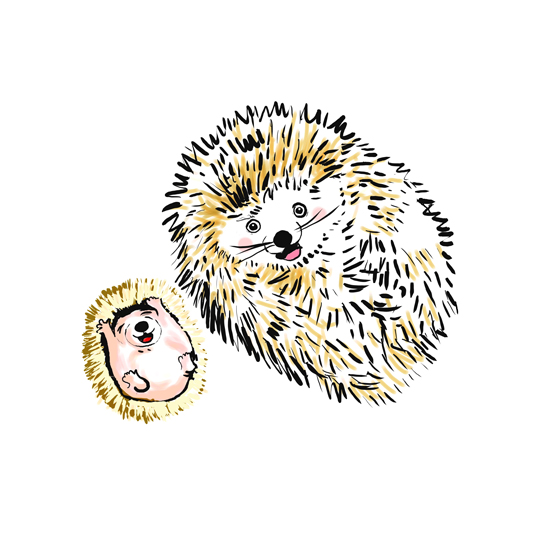 art prints - Baby and mama porcupine by Shom Teoh