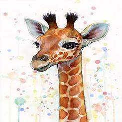 watercolor giraph