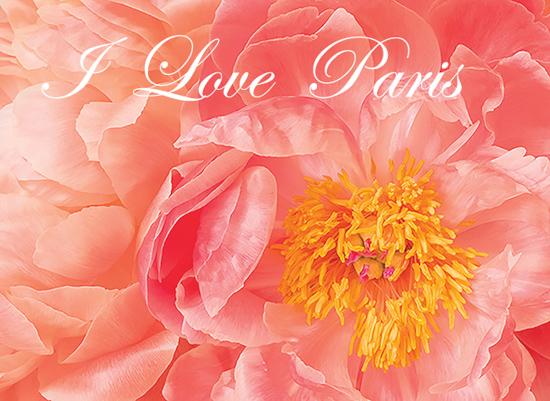 art prints - I Love Paris by by Kim M. Herzog Photography