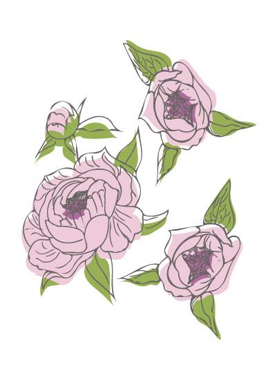 art prints - Pink Peonies by Allie Espinal