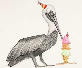 art prints - No Longer Endangered: Brown Pelican Party by Kristina Latraverse