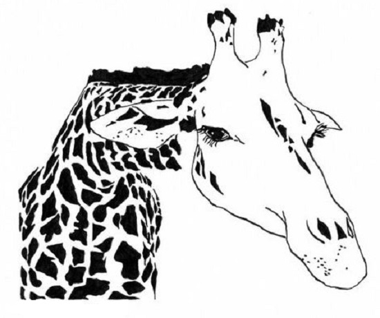 art prints - The Nosey Giraffe by Rachel Knight
