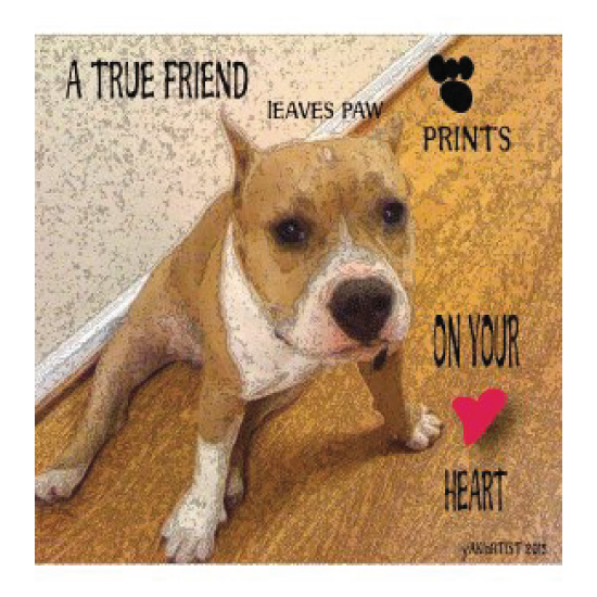 art prints - A True Friend by YakiArtist