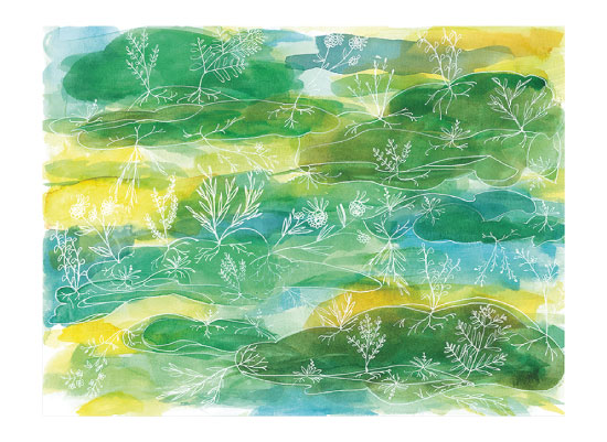 art prints - Cloud Lines: Garden by Island Art and Soul