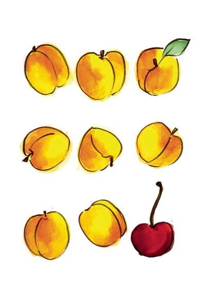 art prints - Apricots and a Cherry by Island Art and Soul