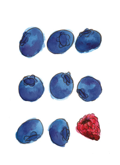 art prints - Blueberries and a Raspberry by Island Art and Soul