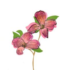 Dogwood Flowers Make me Happy