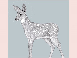 art prints - little fawn by Jessica Enlow