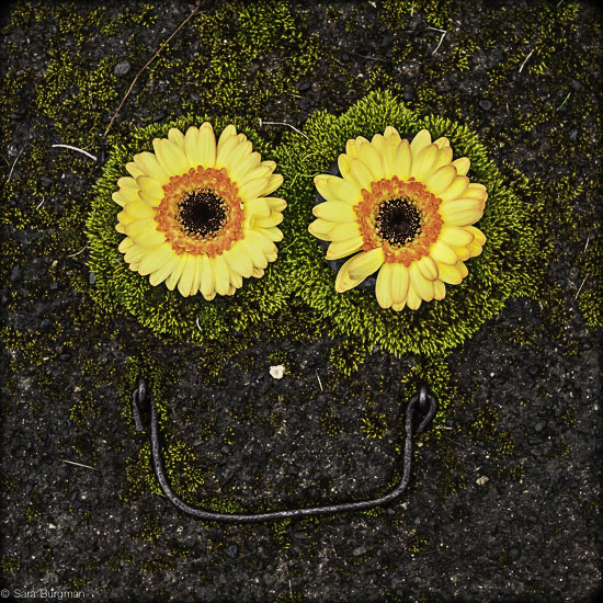art prints - Find the happy everywhere you go by Sara Burgman