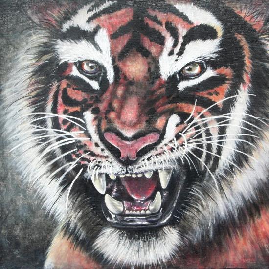 art prints - TIGER by Selinah Bull