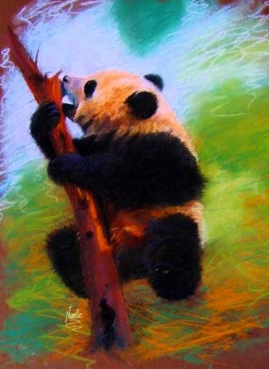 art prints - China Panda by Noelle