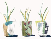 Potted Plants by Hannah Burnworth