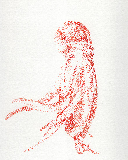art prints - Bright Octopus by Lauren Haule