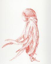 Bright Octopus by Lauren Haule