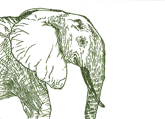 art prints - Green Elephant by Lauren Haule