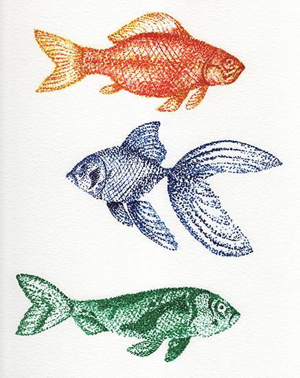 art prints - One Fish Three Fish by Lauren Haule